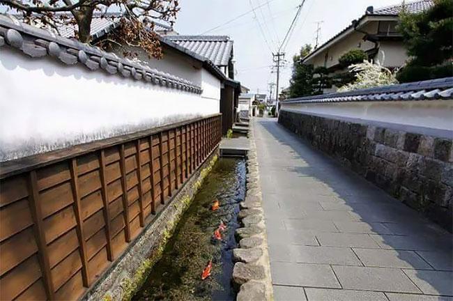 Kisah Air Selokan Bersih di Jepang dan di Klaten yang Jadi Destinasi Wisata Dadakan