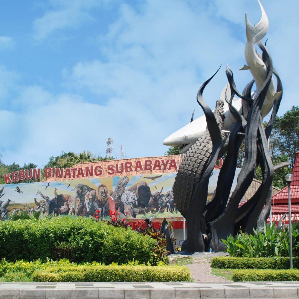 Wisata Kuliner Wajib Di Surabaya
