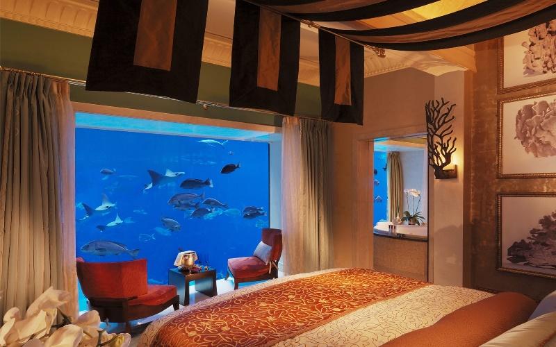 Ini Dia 8 Hotel Bawah Laut yang Paling Mengagumkan di Dunia