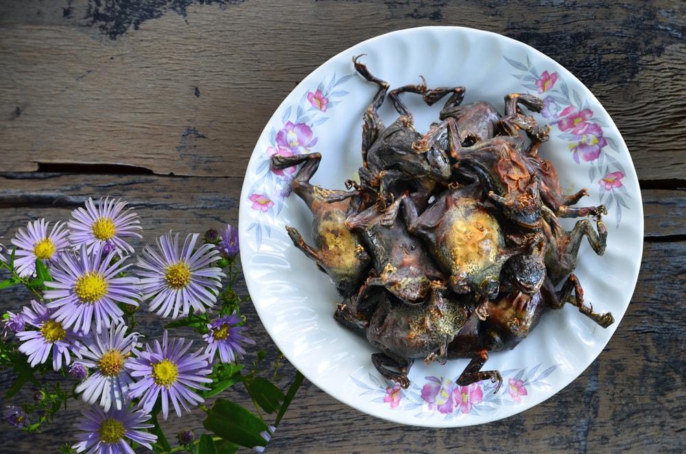 5 Kuliner Mematikan di Dunia yang Diburu Para Traveler