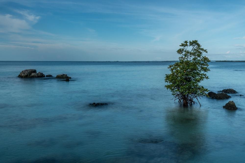 Terpukau Cantiknya Pantai Tureloto, Laut Mati dari Indonesia yang Punya Sejuta Pesona