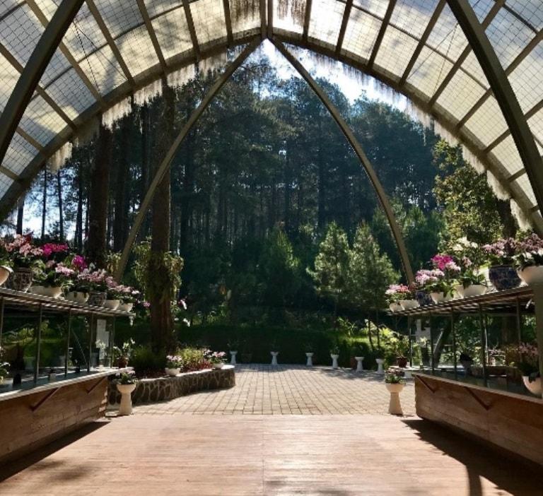 Orchid Forest Lembang, Tempat Wisata Baru yang Bikin Hati Senang