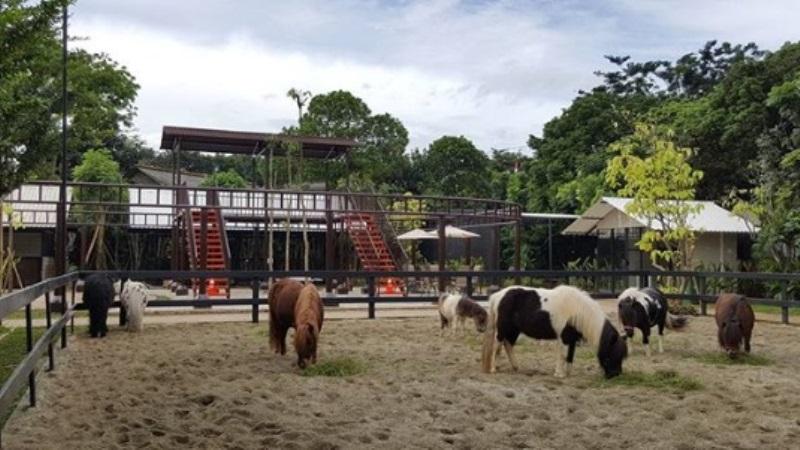 5 Tempat Wisata Terbaik di Tangerang Selatan Ini Wajib Kamu Datangi Saat Akhir Pekan