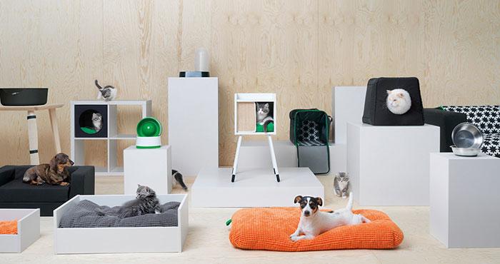 furniture untuk hewan kesayangan
