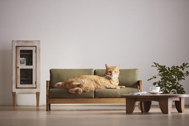 Imut Banget, Perusahaan Jepang Bikin Furniture Mini untuk Hewan Kesayangan