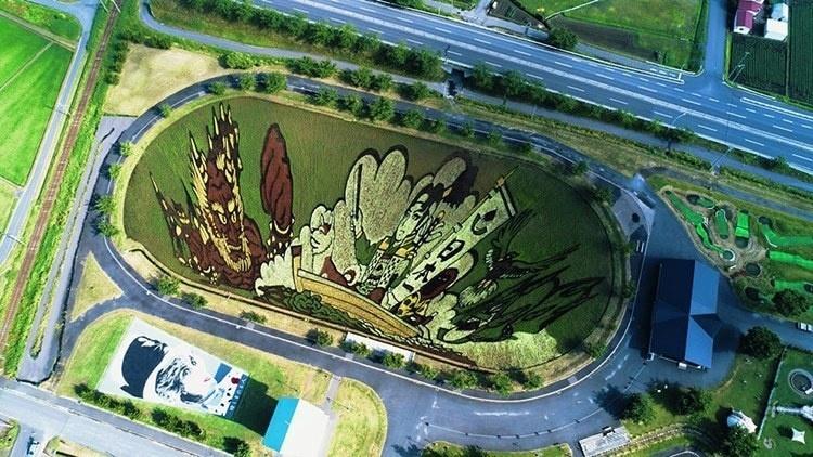 Seni Mural Sawah dari Jepang, Sukses Bikin Kagum dan Tercengang