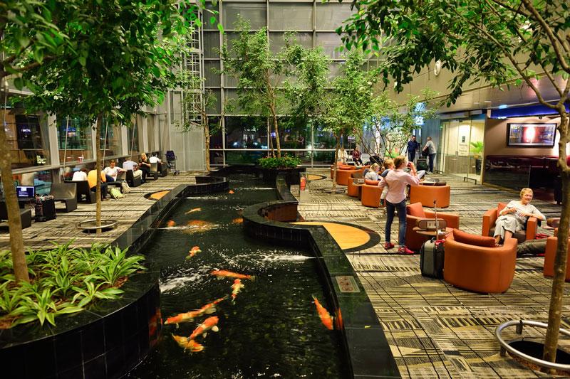 taman di bandara changi singapura