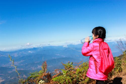 mendaki gunung bersama anak