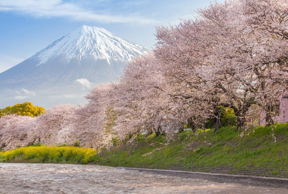 pertanyaan seputar traveling ke Jepang