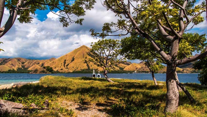 Fakta Menarik Pulau Sabu, Destinasi Unik di Nusa Tenggara Timur
