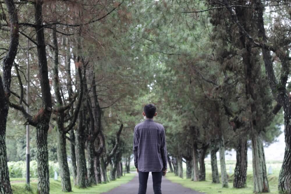 Piknik ke Orchid Forest Cikole Bandung, Surganya Para Pecinta Selfie
