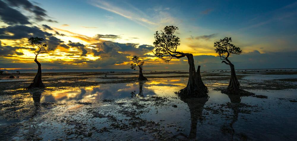 5 Pantai Terbaik di Sumba Buat Berburu Sunset