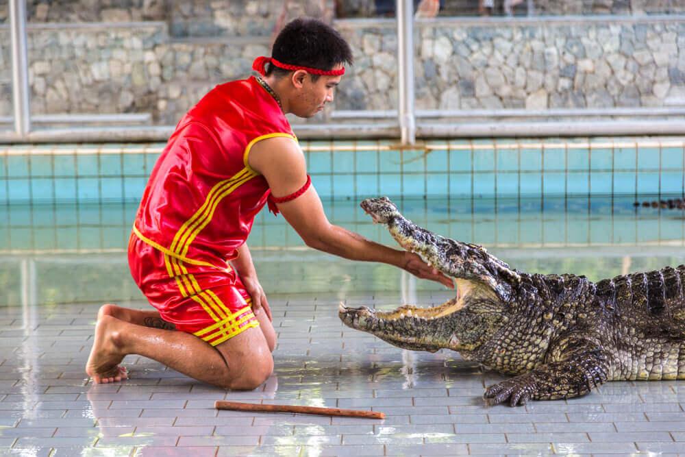 5 Tempat Wisata Seru di Pattaya, Cocok Buat yang Doyan Traveling
